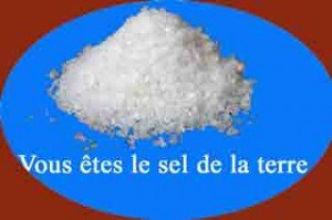 sel-de-la-terre